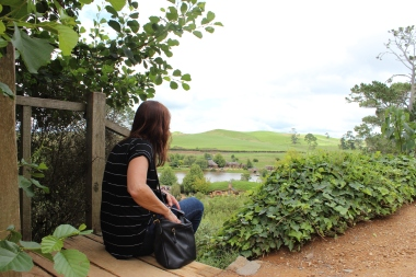 overlooking Hobbiton