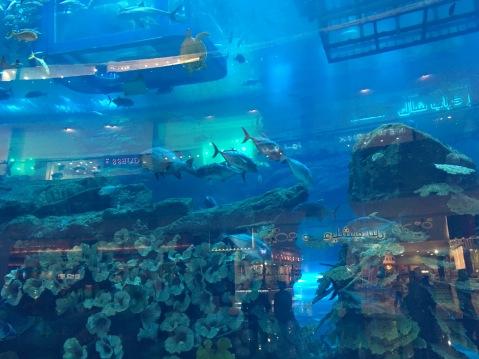 The Magical World Of Dubai Mall La Piccola Viaggiatrice